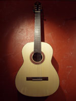 Engelmann spruce top, Indian Rosewood back and sides.