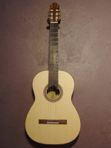 Engelmann spruce top, Indian rosewood back and sides